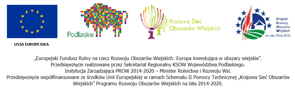logo ksowu